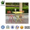 정원 고정되는 특정 사용 금속 둥근 다방 테이블