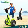 大人の電気一人乗り二輪馬車のためのスマートなはずみ車を立てる2車輪