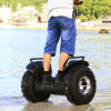 防水Ecorider Escooter、Electric Scooter、Self Balancing Electric Chariot X2の上の2 Wheel Stand