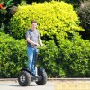 Outdoor Sportsのための2 Wheels Kick Scooter