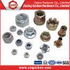 도매 육 견과 또는 플랜지 견과 또는 나일론 삽입 Nut/T 견과 또는 리베트 견과