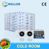 15tons gefrorener Fisch-Kühlraum/Gefriermaschine-Raum