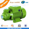 220V 60Hz Qb60 Water Pump con Termal Protector Single Phase Pump
