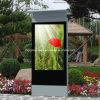 Pavimento che si leva in piedi chiosco impermeabile,  affissione a cristalli liquidi esterna 42-98 che fa pubblicità a Displaye