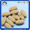 GMP Factory Extract Dandelion Extract Tablet