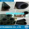 Tubo flessibile dell'acqua con l'inserto del tessuto (tubo flessibile dell'inserto del panno)