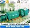 Dampf-Turbine und Generator der Hand50mw zweites