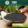 Fertilizzante biologico del fertilizzante organico del fertilizzante microbico dei batteri