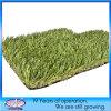 Price poco costoso Fake Lawn Grasses per i giardini e Landscaping (0039)