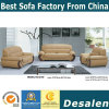 Premiers meubles de salle de séjour de sofa de cuir véritable des graines (C18)