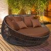 Daybed esterno rivestito del patio della polvere di alluminio calda di vendita