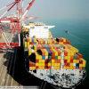 Professioneller gefährlicher Ladung-Logistik-Service von Shenzhen China nach Banjul