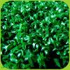 Im Freien künstliches Teppich-Gras-Kricket-Bereich-Gras