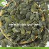 Las materias de grado AAA de GWS Granos de semillas de calabaza