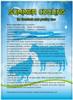 Été Cooling pour Livestock et Poultry Use