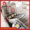 Machine à laver automatique de nettoyage de fruits frais du SUS 304