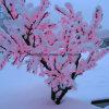 De LEIDENE van de winter Decoratie van Kerstmis steekt het Licht van de Boom van de Kers aan