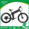 gordura gorda elétrica da bicicleta de 48V 500W com Suspention cheio