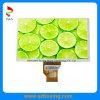 индикация IPS 1280 (RGB) X720p LCD солнечного света 9.0-Inch четкая с полным углом наблюдения