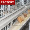 Cage automatique de couche de poulet à vendre à Philippines