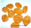 Nova safra de frutos secos de alta qualidade