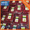 الصين مصنع محبوب [شيت متريل] لأنّ ثمرة تعليب