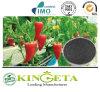 Il fertilizzante organico acido di Fulvic ampiamente si è applicato nell'agricoltura
