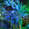 De nieuwe Laser van het Landschap van de Glimworm van Blisslights van de Aankomst Groene en Blauwe Statische, de OpenluchtProjector van de Laser van het Landschap van Kerstmis