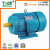 TOPS AC 100kw Induction Motor
