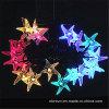 la cadena de hadas de las estrellas de mar solares 20LED se enciende (RS1025)