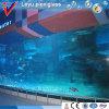 Hot New Products Aquário de tanque de peixe acrílico personalizado