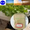 Amino Acod hidrolizadas polvo compuesto de un 80% de abono orgánico