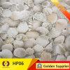 Telha de assoalho cerâmica do banheiro da cozinha do balcão (HP06)