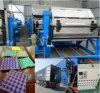 Bandeja automática del huevo del papel del moldeado de la pulpa que forma la máquina con el surtidor de China