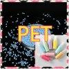 Material plástico Masterbatch Pet virgem de alta qualidade preço de fábrica