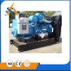 Fatto nel gruppo elettrogeno diesel silenzioso della Cina 600kVA