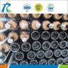Tout en verre tuyau collecteur de chauffage solaire thermique tube de dépression pour le Mexique