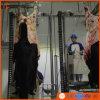 مواش لحمة [بروسسّ مشن] من [هلل] عمليّة ذبح