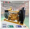 Prezzo di fabbrica fornitore della centrale elettrica del generatore del biogas di 200 chilowatt in Cina