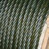 ISO9001를 가진 직류 전기를 통한 철강선 밧줄: 2008년