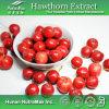 Poudre 100% d'extrait de fruit d'aubépine de Nutural