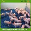 Свинья планке/ пластиковый настил пола для свиней