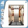met Ce- Certificaat voor de Lift van de Passagier van de Uitvoer van Snelheid 2.0m/S