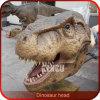 Altos montajes de la pared de la pista del dinosaurio de la simulación del patio al aire libre