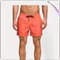 Shorts di nuotata delle palme