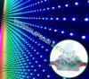 Luz difundida 12m m elegante Ws2801 del pixel de Arduino Digital RGB LED
