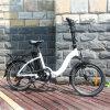 20inch plegable la bici plegable eléctrica de la bici 36V E