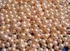 De zoetwater Juwelen van Parels - 2