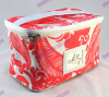 Trolley Makeup Case 210d Polyester pour doublure (FLYDL1006)
