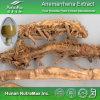 Выдержка Anemarrhena высокого качества (коэффициент: 4:1 ~20: 1)